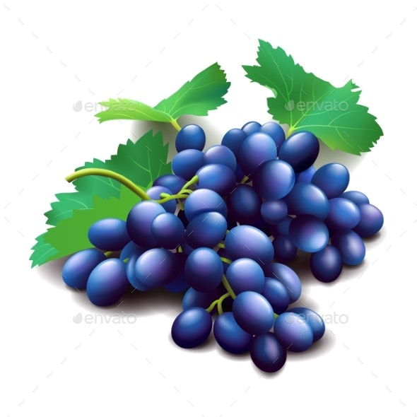 Realistic Purple Grapes Bunch with Green Leaves - Flowers & Plants Nature