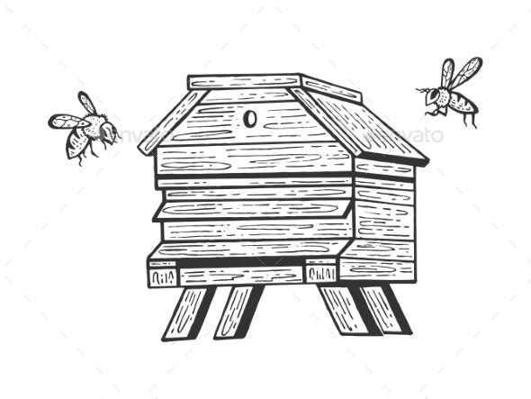 Bee Hive and Bees Sketch Engraving Vector - Animals Characters