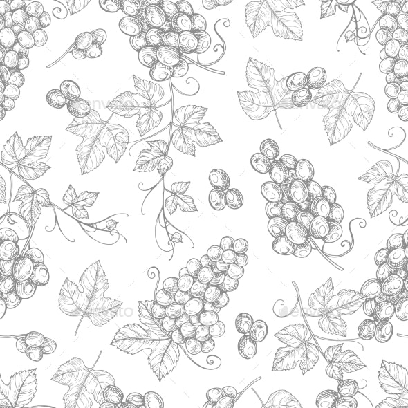 Sketch Grapes Seamless Pattern Vector Texture - Backgrounds Decorative