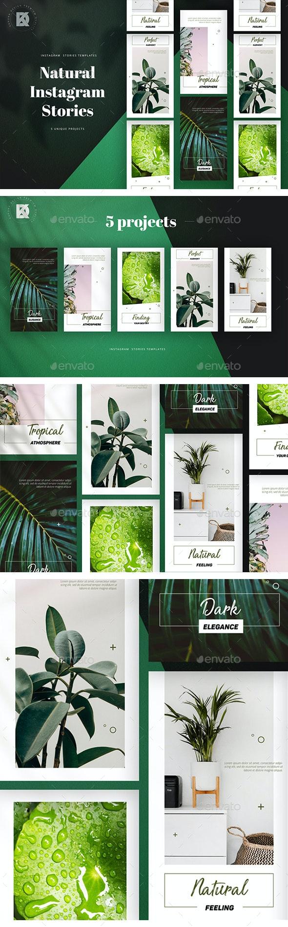 Natural Instagram Stories - Social Media Web Elements