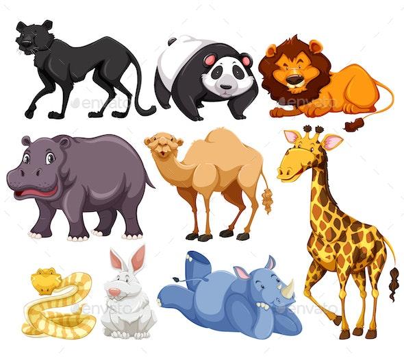Wild Animals Mix - Animals Characters