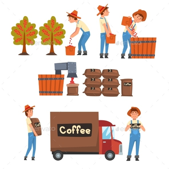 Coffee Industry Production Stages Set Farmers - Industries Business