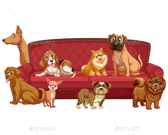 Sofa Dogs - Animals Characters