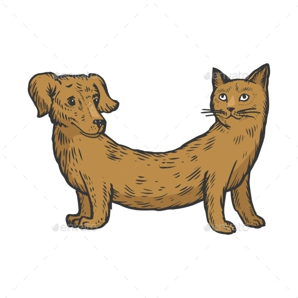 Cat Dog Fake Animal Color Sketch Engraving - Miscellaneous Characters