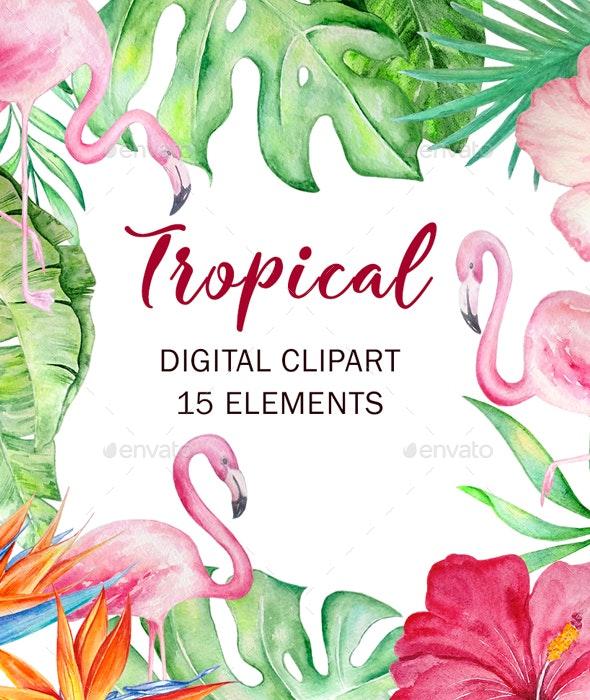 Watercolor Tropical Clipart Set - Illustrations Graphics