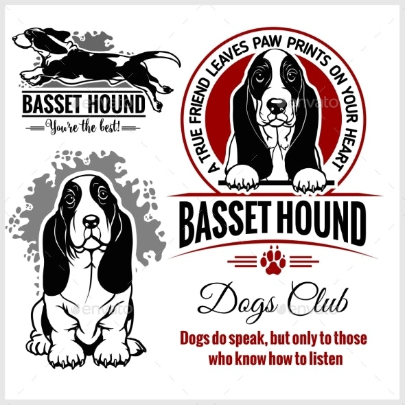 Basset Hound Dog - Animals Characters