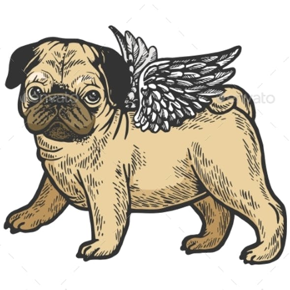 Angel Pug Puppy Color Sketch Engraving Vector