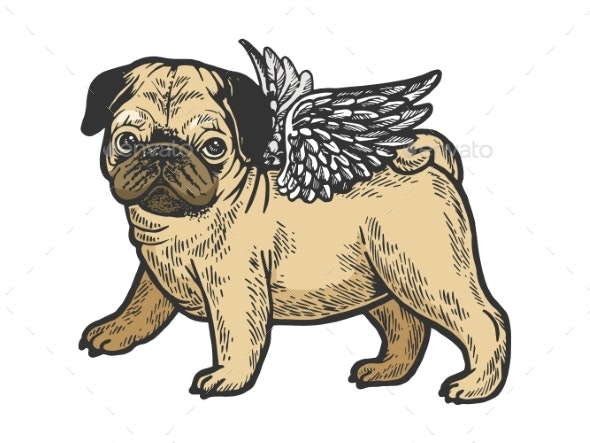 Angel Pug Puppy Color Sketch Engraving Vector - Animals Characters