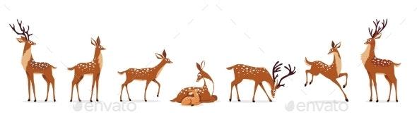 Deer Set - Animals Characters