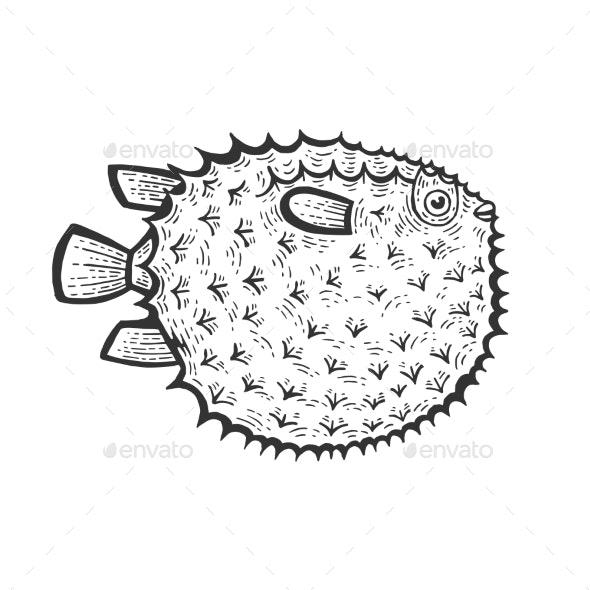 Fugu Toxic Fish Sketch Engraving Vector - Miscellaneous Vectors