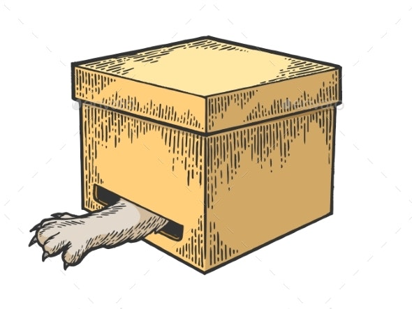 Cat in Box Paw in Hole Color Sketch Engraving - Animals Characters