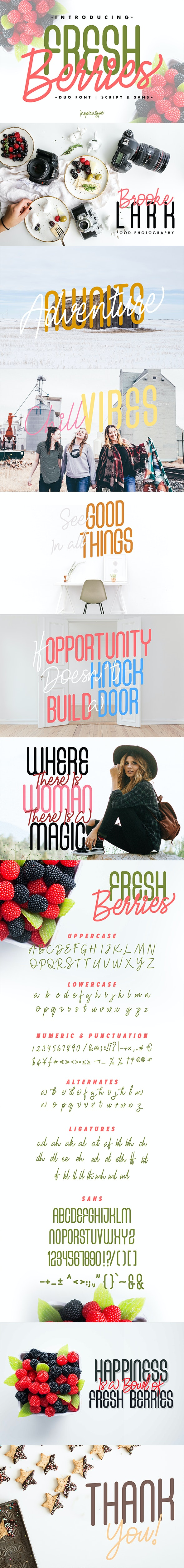 Fresh Berries - Script and Sans - Script Fonts