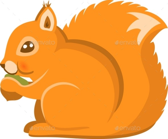 Cartoon Squirrel Vector Isolated - Animals Characters