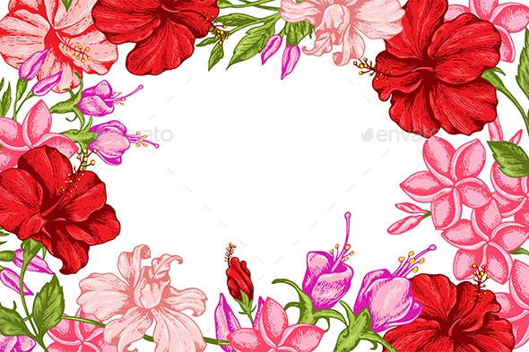 Tropical Background with Flowers - Flowers & Plants Nature