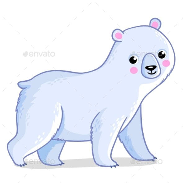 Polar Bear on a White Background