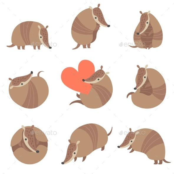 Collection of Armadillos - Animals Characters