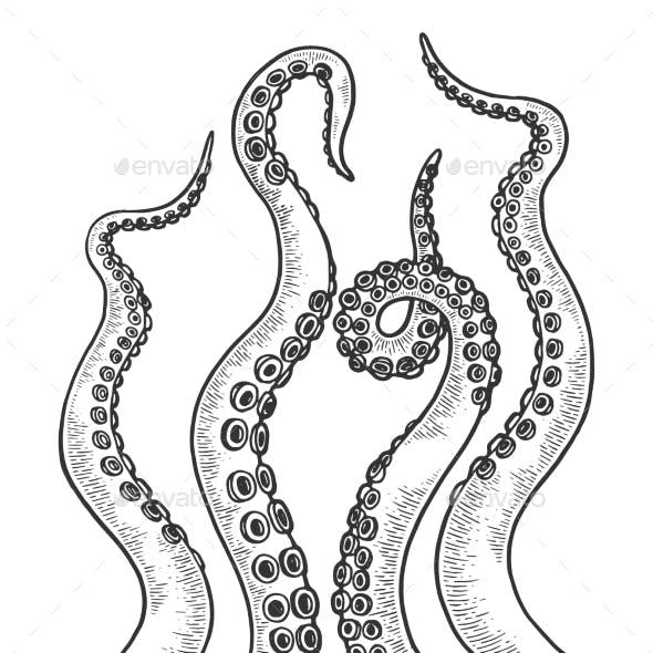 Octopus Tentacle Set Sketch Engraving Vector