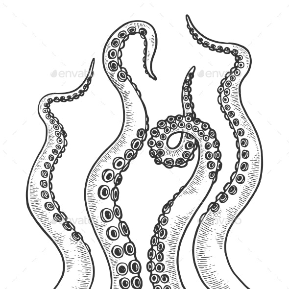 Octopus Tentacle Set Sketch Engraving Vector - Miscellaneous Characters