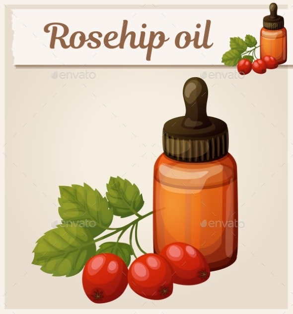 Rosehip Oil and Berries in Bottle Illustration - Food Objects