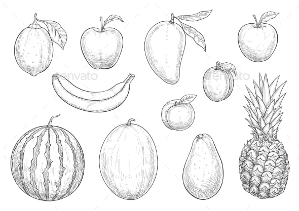 Fresh Exotic Fruits Sketch Vector Isolated Icons - Food Objects