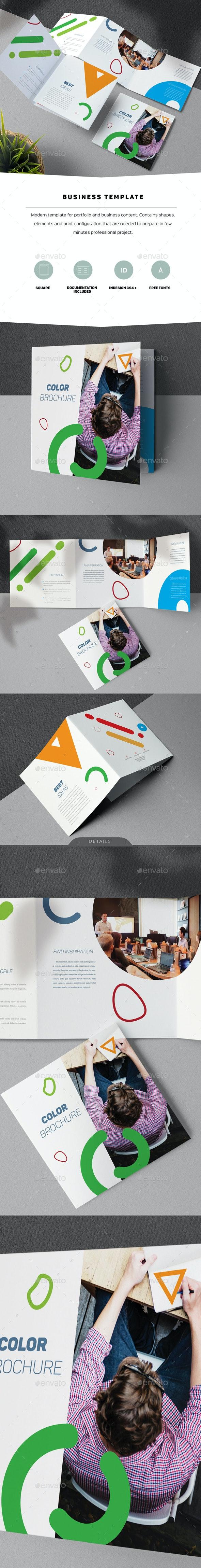 Color Brochure - Informational Brochures