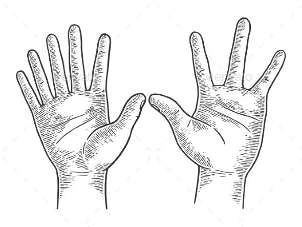 Hands with Six and Four Fingers Sketch Engraving - Health/Medicine Conceptual