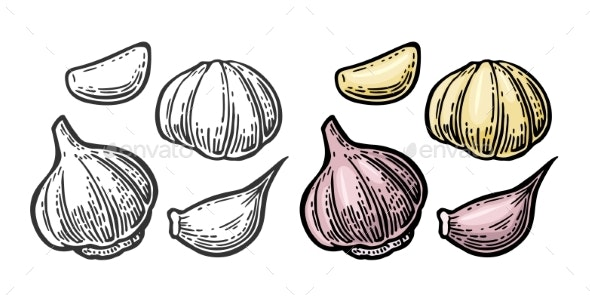 Garlic with Slices Isolated on White Background - Food Objects