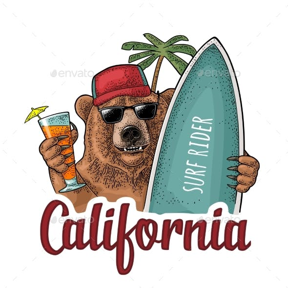 Bear Holding Surfboard and Cocktail