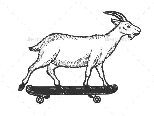 Goat on Skateboard Sketch Engraving Vector - Animals Characters
