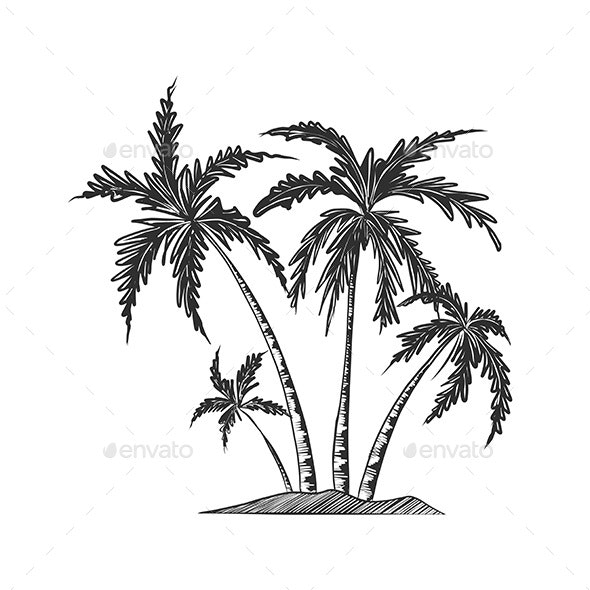 Hand Drawn Sketch of Palm Trees - Flowers & Plants Nature