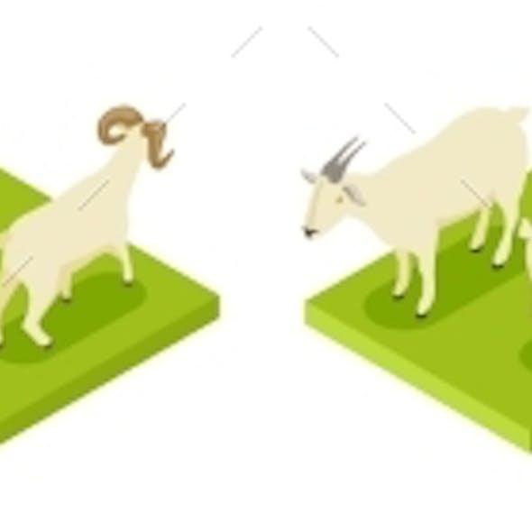 Isometric Hoofed Animals