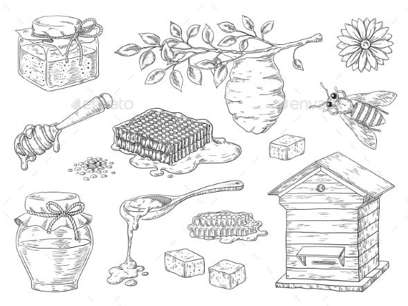 Hand Drawn Honey - Food Objects