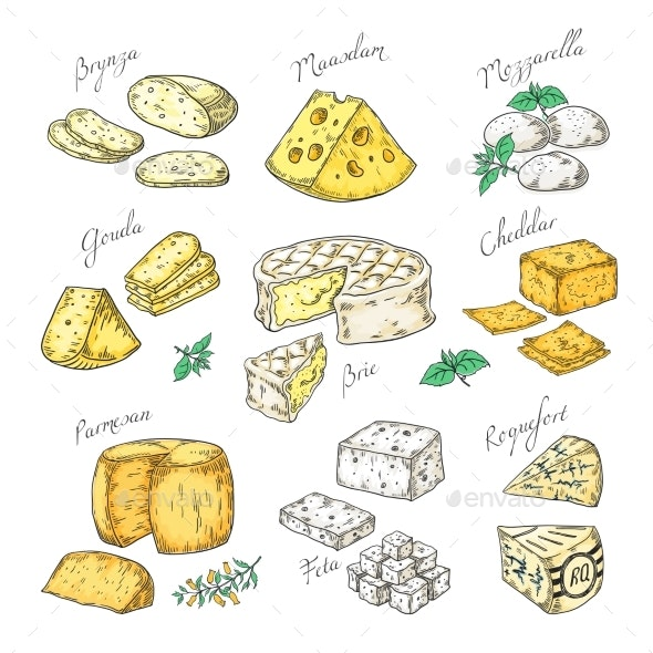 Hand Drawn Cheeses - Food Objects