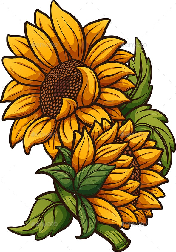 Cartoon Sunflower - Flowers & Plants Nature