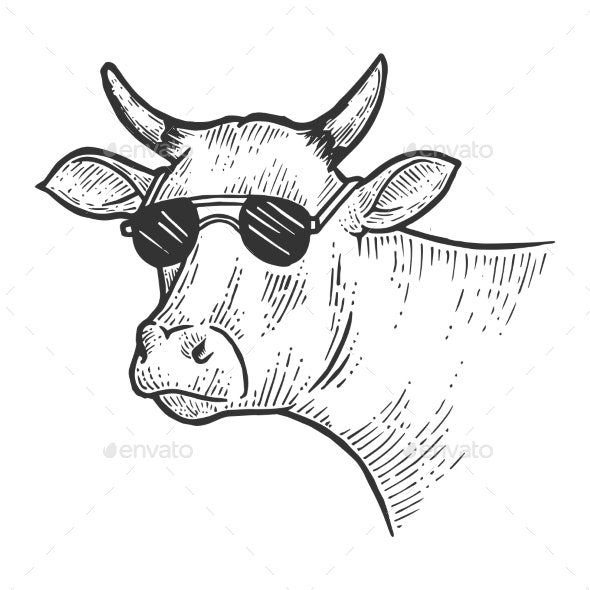Cow Animal in Sunglasses Sketch Engraving Vector - Miscellaneous Vectors