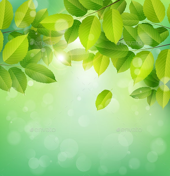 Spring Nature Banner With Green Leaves By Artness Graphicriver