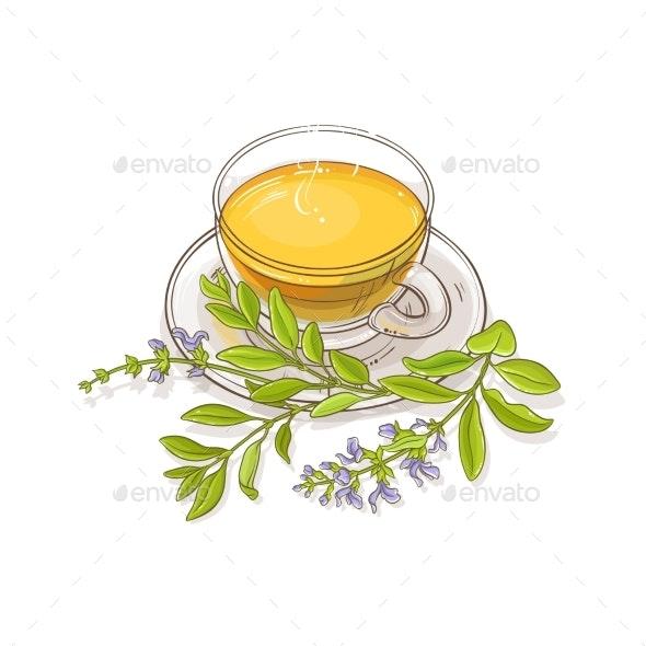 Sage Tea Vector Illustration - Food Objects