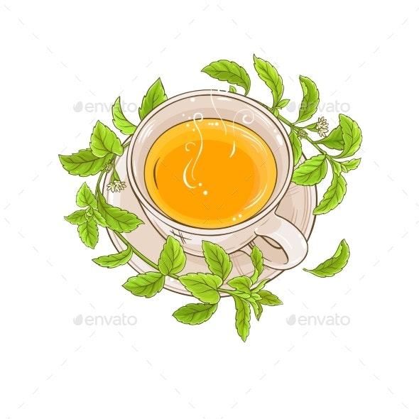 Stevia Tea Illustration - Food Objects