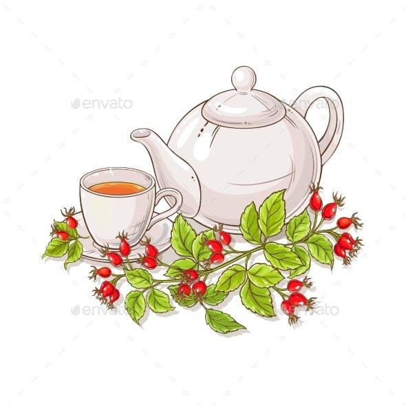 Wild Rose Tea Illustration on White Background