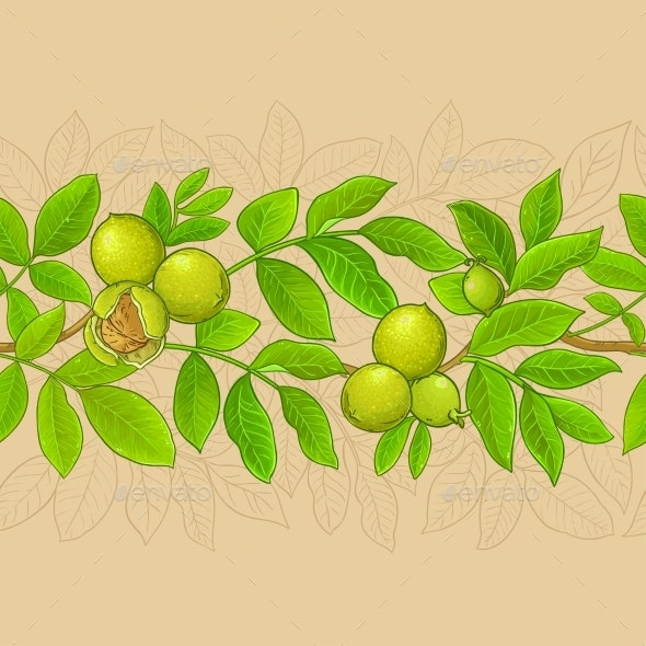 Walnut Branches Vector Pattern on Color Background - Food Objects