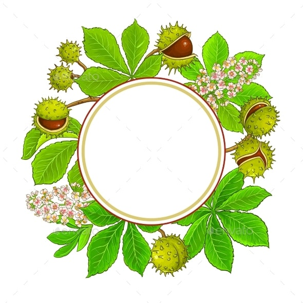 Chestnut Branches Vector Frame on White Background - Flowers & Plants Nature