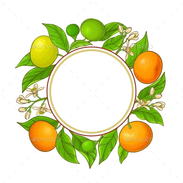 Tangerine Ranches Vector Frame on White Background - Food Objects