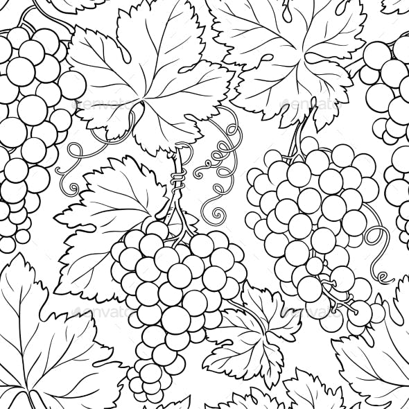 Grapes Branches Vector Pattern on White Background