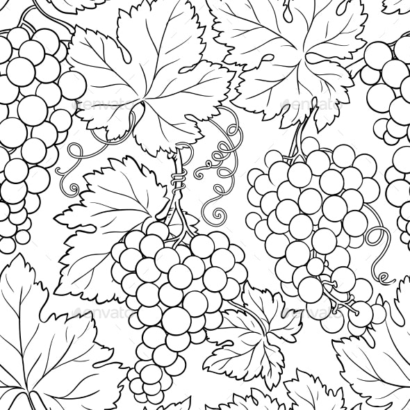 Grapes Branches Vector Pattern on White Background - Food Objects