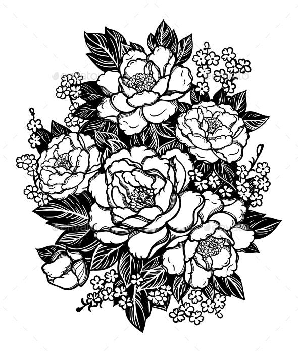 Peonies or Roses - Flowers & Plants Nature