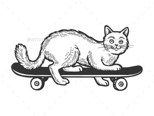 Cat on Skateboard Sketch Engraving Vector - Miscellaneous Vectors