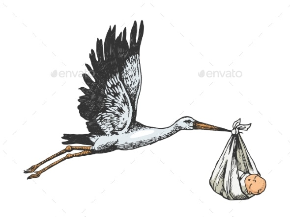 Stork Crane Carries Baby Color Sketch Engraving - People Characters