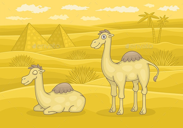 Camels in desert - Animals Characters