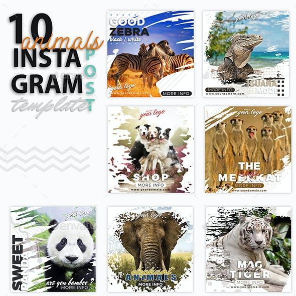 Instagram Post Templates