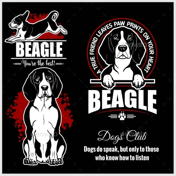Beagle - Animals Characters